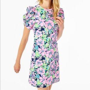 NWT Lilly Pulitzer Anabella T-Shirt Dress